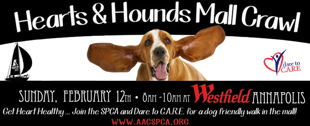Hearts and Hounds 2017